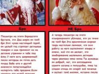 Балуется ли Санта Клаус грибочками?